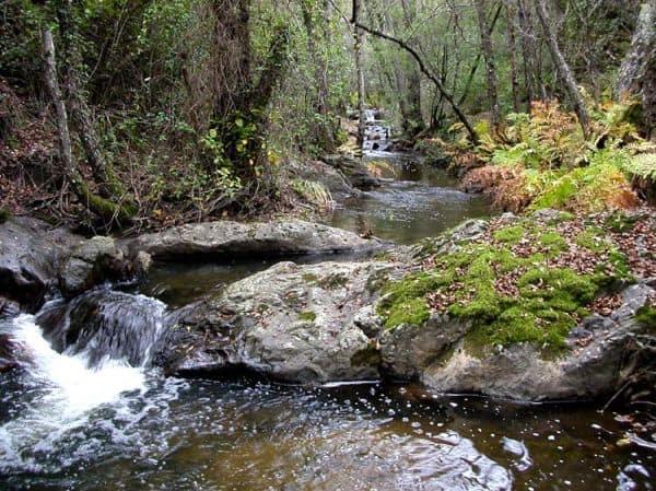 arroyo en Fuencalente sierra Madrona