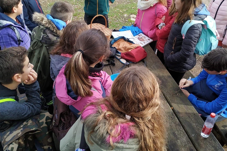 Eplicando las setas en el valle de Alcudia
